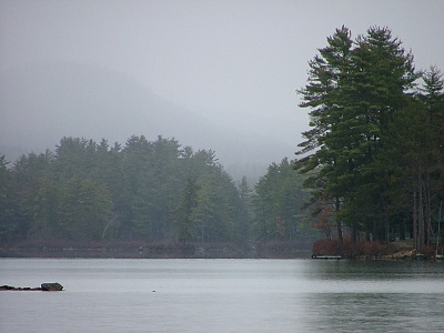 Picture of forested lake